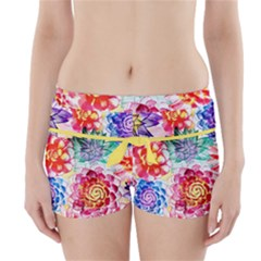 Colorful Succulents Boyleg Bikini Wrap Bottoms