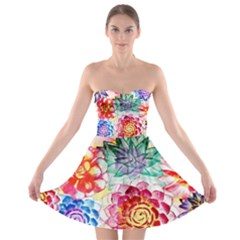 Colorful Succulents Strapless Bra Top Dress