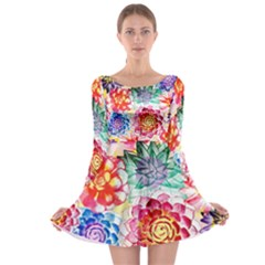 Colorful Succulents Long Sleeve Skater Dress