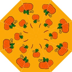 Thanksgiving pumpkins pattern Folding Umbrellas