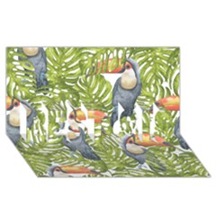 Tropical Print Leaves Birds Toucans Toucan Large Print BEST SIS 3D Greeting Card (8x4)