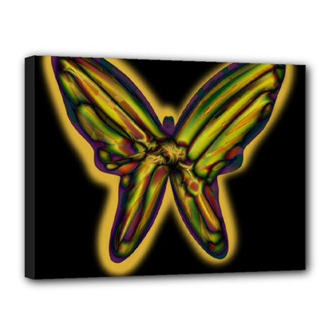 Night butterfly Canvas 16  x 12