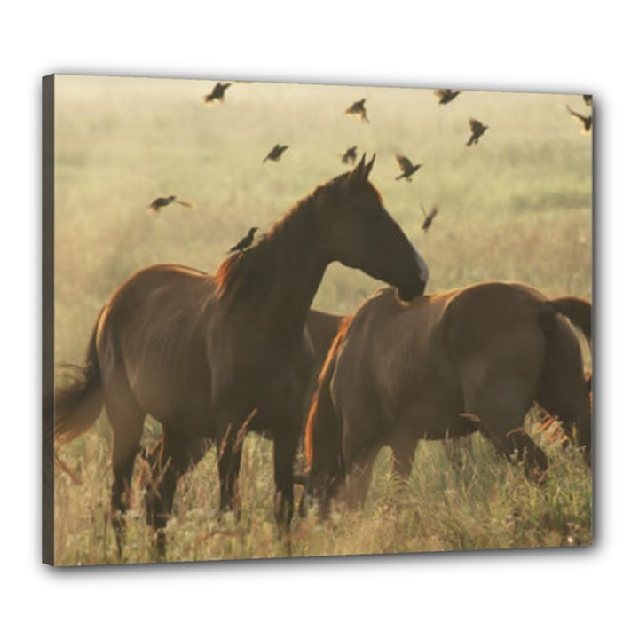 Horses Canvas 24  x 20  (Framed)