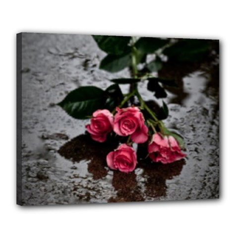 Roses Canvas 20  X 16  (framed)