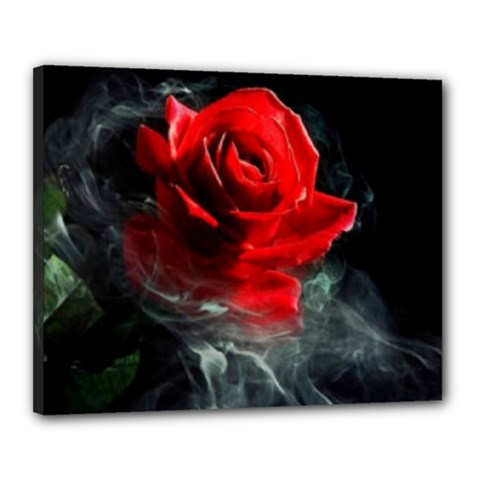 Passion Rose Canvas 20  X 16  (framed)