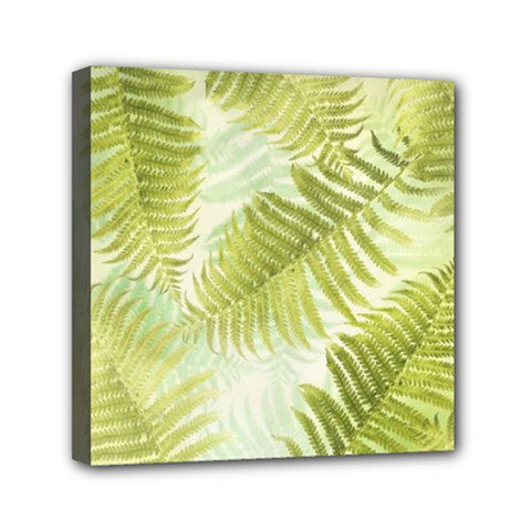 Fern Mini Canvas 6  X 6  (framed)