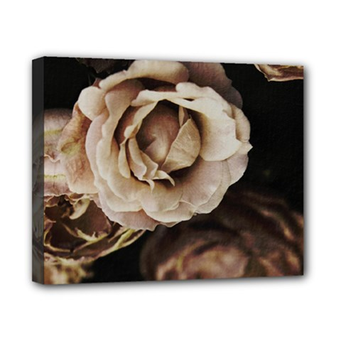 Roses Flowers Canvas 10  x 8