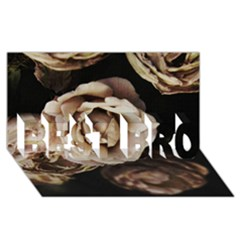 Roses Flowers BEST BRO 3D Greeting Card (8x4)