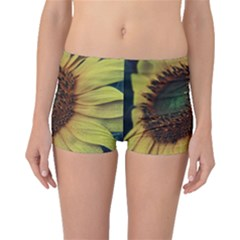 Sunflower Photography  Boyleg Bikini Bottoms