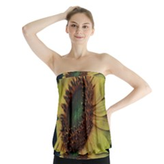 Sunflower Photography  Strapless Top