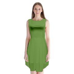 Wasabi Colour Sleeveless Chiffon Dress