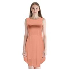 Tacao Colour Sleeveless Chiffon Dress