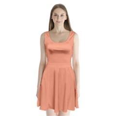 Tacao Colour Split Back Mini Dress