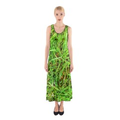 Natures Grass And Shamrock Print  Sleeveless Maxi Dress