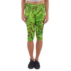 Natures grass and shamrock print  Capri Yoga Leggings