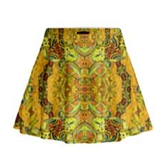 Dsc0305efe (3)ddf Mini Flare Skirt