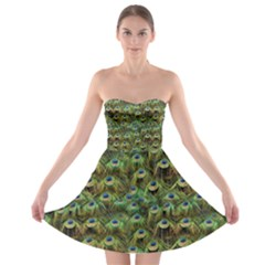 Peacocks Are The Best Strapless Bra Top Dress