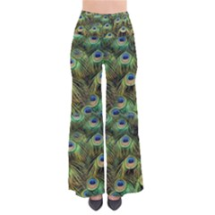 Peacocks Are The Best Pants