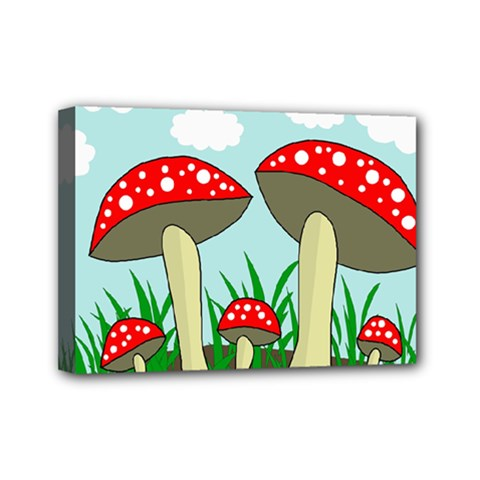 Mushrooms  Mini Canvas 7  x 5