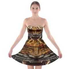 Tiger Face Strapless Bra Top Dress