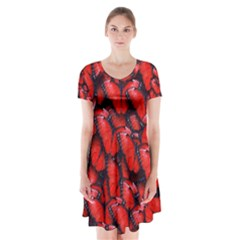 The Red Butterflies Sticking Together In The Nature Short Sleeve V-neck Flare Dress