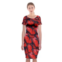 The Red Butterflies Sticking Together In The Nature Classic Short Sleeve Midi Dress