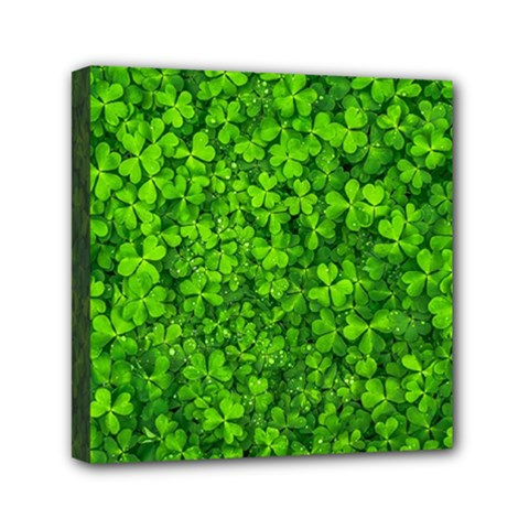 Shamrock Clovers Green Irish St  Patrick Ireland Good Luck Symbol 8000 Sv Mini Canvas 6  X 6