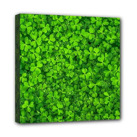 Shamrock Clovers Green Irish St  Patrick Ireland Good Luck Symbol 8000 Sv Mini Canvas 8  x 8