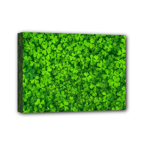 Shamrock Clovers Green Irish St  Patrick Ireland Good Luck Symbol 8000 Sv Mini Canvas 7  x 5