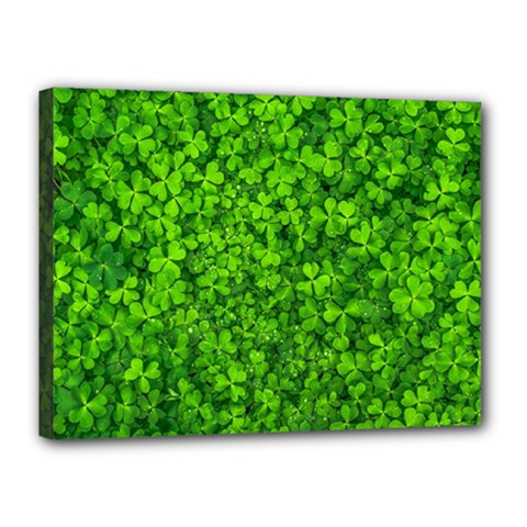 Shamrock Clovers Green Irish St  Patrick Ireland Good Luck Symbol 8000 Sv Canvas 16  X 12