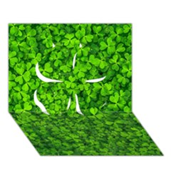 Shamrock Clovers Green Irish St  Patrick Ireland Good Luck Symbol 8000 Sv Clover 3D Greeting Card (7x5)