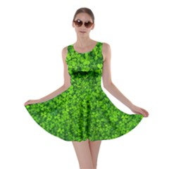 Shamrock Clovers Green Irish St  Patrick Ireland Good Luck Symbol 8000 Sv Skater Dress