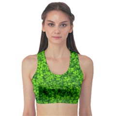 Shamrock Clovers Green Irish St  Patrick Ireland Good Luck Symbol 8000 Sv Sports Bra