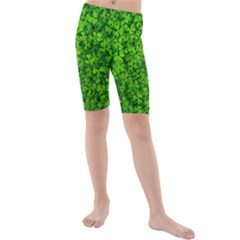 Shamrock Clovers Green Irish St  Patrick Ireland Good Luck Symbol 8000 Sv Kids  Mid Length Swim Shorts