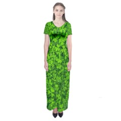 Shamrock Clovers Green Irish St  Patrick Ireland Good Luck Symbol 8000 Sv Short Sleeve Maxi Dress