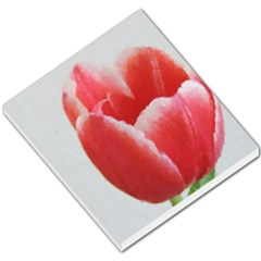 Red Tulip Watercolor Painting Small Memo Pads