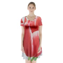 Red Tulip Watercolor Painting Short Sleeve V Neck Flare Dress