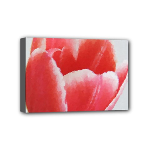 Tulip red watercolor painting Mini Canvas 6  x 4