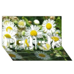 White Summer Flowers Watercolor Painting Art Believe 3d Greeting Card (8x4)