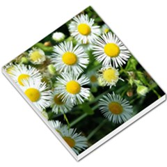 White Summer Flowers Oil Painting Art Small Memo Pads