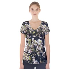 Japanese cherry blossom Short Sleeve Front Detail Top