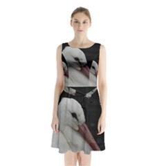 Wild Stork Bird Sleeveless Chiffon Waist Tie Dress