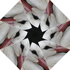Wild Stork Bird, Close Up Golf Umbrellas