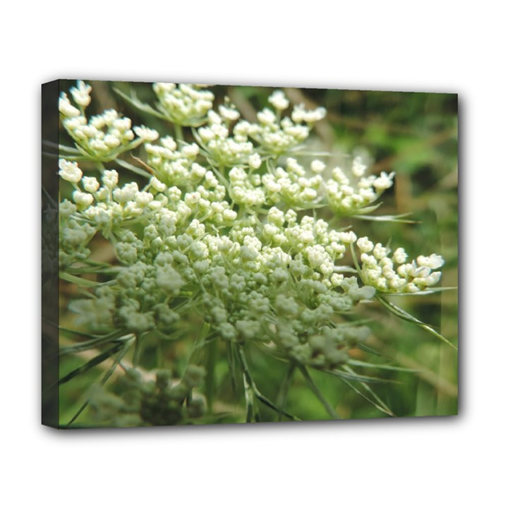 White summer flowers Deluxe Canvas 20  x 16
