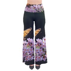 Butterfly Sitting On Flowers Pants