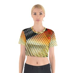 Technology Circuit Cotton Crop Top
