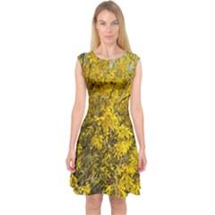 Nature, Yellow Orange Tree Photography Capsleeve Midi Dress