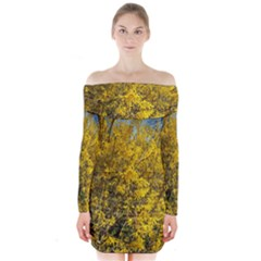 Nature, Yellow Orange Tree Photography Long Sleeve Off Shoulder Dress