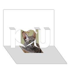 Cornish Rex, Blue I Love You 3D Greeting Card (7x5)