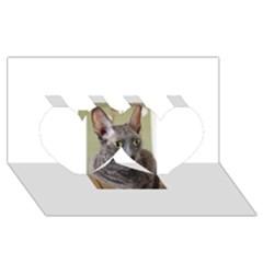 Cornish Rex, Blue Twin Hearts 3D Greeting Card (8x4)